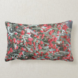 Reindeer moss pattern pillow