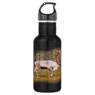 Reindeer walking in forest 532 ml water bottle