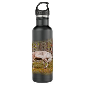 Reindeer walking in forest 710 ml water bottle
