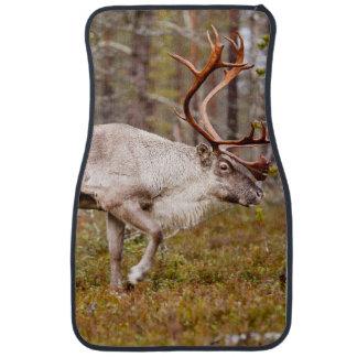 Reindeer walking in forest car mat
