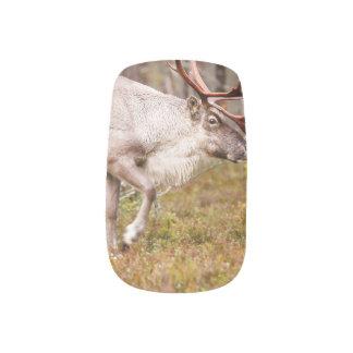 Reindeer walking in forest minx nail art