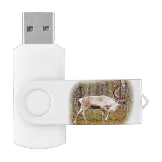 Reindeer walking in forest USB flash drive