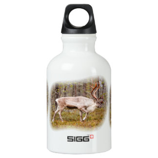 Reindeer walking in forest water bottle