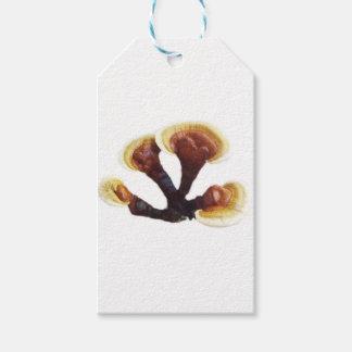 Reishi Mushroom Gift Tags