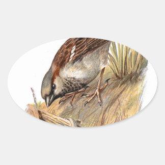 Relative Wild Birds Swaysland Sparrow Oval Sticker