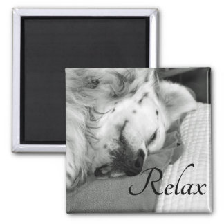 """""""Relax"""" Cute Dog Sleeping Square Magnet"""