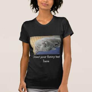 Relax! Grey Purring Cat - black T-Shirt for Women