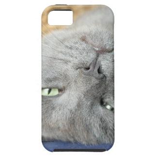 Relax! Grey Purring Cat iPhone SE/5/5S Case