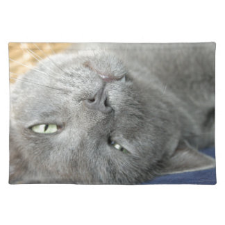 Relax! Grey Purring Cat Placemat
