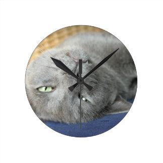 Relax! Grey Purring Cat Round Clock