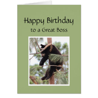 Relax it's Your Birthday Bear for Great  Boss Card