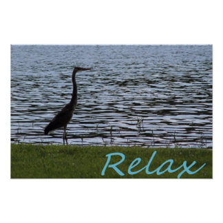 Relax Posters