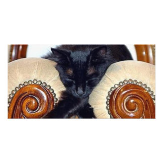 Relaxed Black Cat Sleeping Between Two Chairs Customized Photo Card