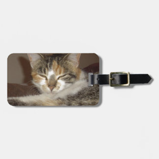 Relaxed Kitty Luggage Tag