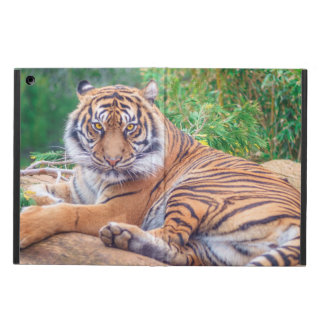 Relaxed Reclining Tiger Cover For iPad Air