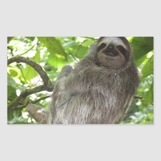 Relaxed Sloth in Nature Sticker