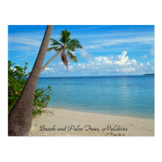 Relaxing Beaches & Palm Trees, Maldives - Postcard