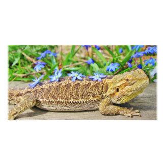 Relaxing Bearded Dragon Custom Photo Card