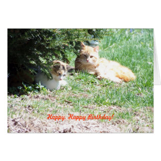 Relaxing Birthday, Cats & Cake Card