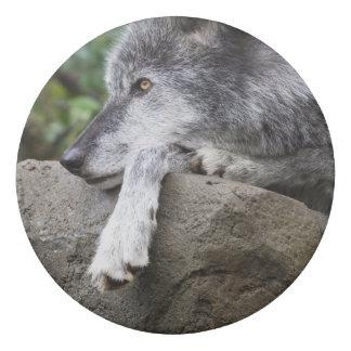 Relaxing Black Wolf Eraser