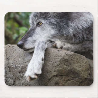 Relaxing Black Wolf Mouse Pad
