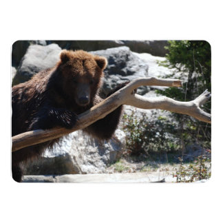 "Relaxing Brown Bear 5"" X 7"" Invitation Card"
