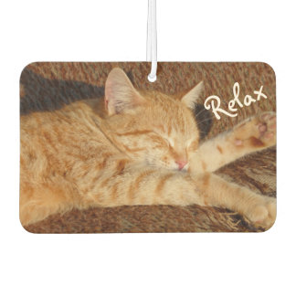 Relaxing Cat - Air Freshener