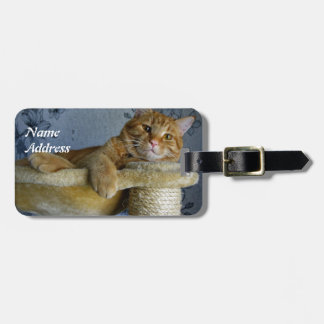 Relaxing Cat Luggage Tag
