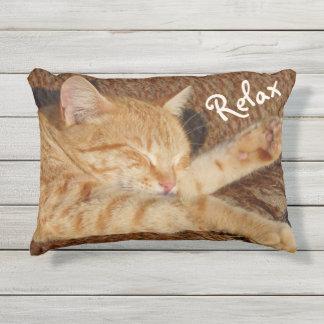 Relaxing Cat Outdoor Pillow