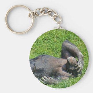 Relaxing Chimpanzee in the Grass - Keychain