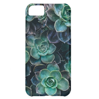 Relaxing Green Blue Succulent Cactus Plants Case For iPhone 5C