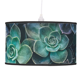 Relaxing Green Blue Succulent Cactus Plants Ceiling Lamps