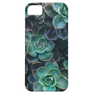 Relaxing Green Blue Succulent Cactus Plants iPhone 5 Cases