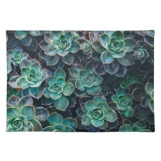 Relaxing Green Blue Succulent Cactus Plants Placemat