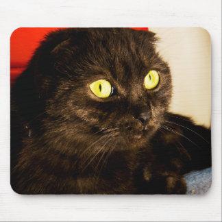 Relaxing Munchkin Cat Mouse Pad