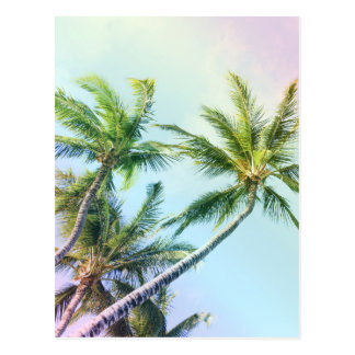 Relaxing Rainbow Color Palms Postcard