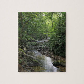 Relaxing wooded stream puzzle