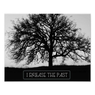 Release The Past Poster