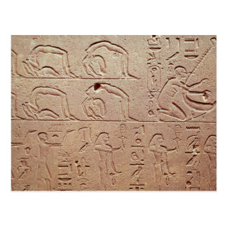 Relief depicting acrobats and a harpist postcard
