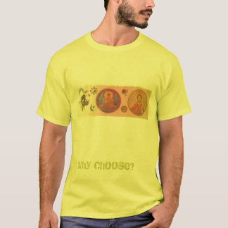 Religions, Why Choose? T-Shirt