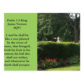 Religious postcard-Garden scene with huge tree Postcard
