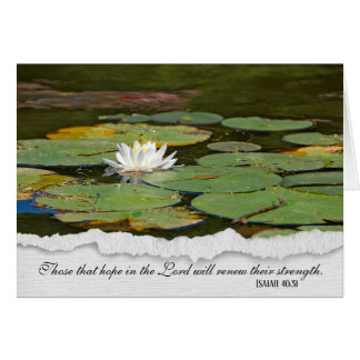 religious sympathy-white water lily with lily pads card