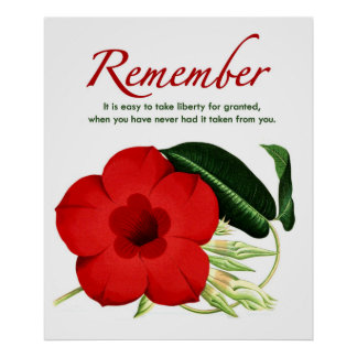 Remember. It is easy to take liberty for granted… Poster