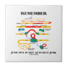 Remember Junk DNA Is Not Actually Junk Tile