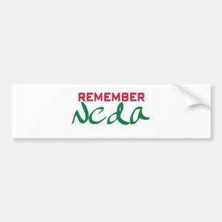 Remember Neda (Iran) Bumper Sticker