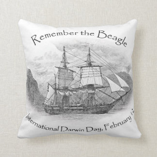 Remember the Beagle Square pillow