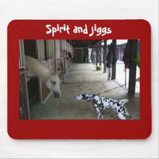 Remembering Spirit and Jiggs Meeting Mouse Pad