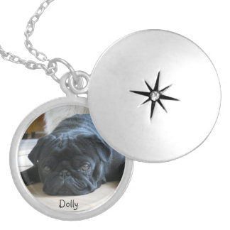 Remembrance Pet Photo Pendant Locket - memorial