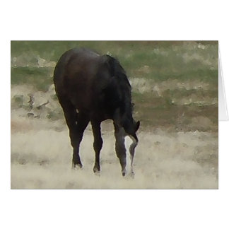 Remuda Herd Grazes - Ranch Cow Horses - Blank Card