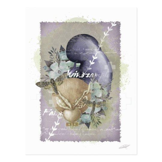 """""""Renal"""" postcard"""